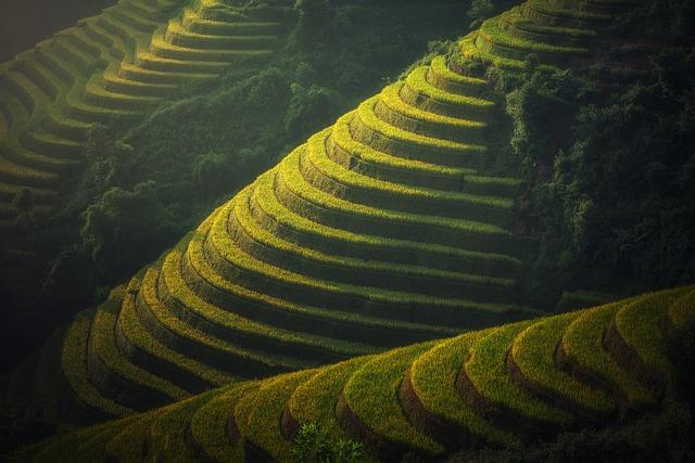 Backpacking in China - Landwirtschaft