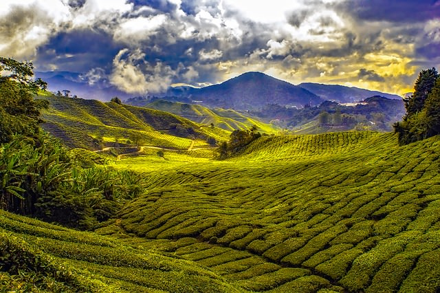 Backpacking in Malaysia - Landschaft und Natur