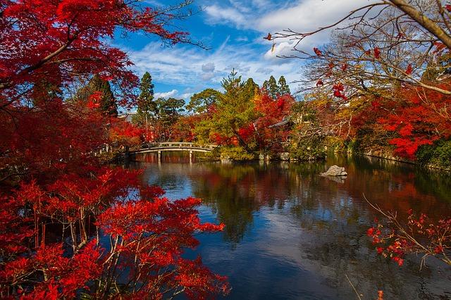 Backpacking in Japan - Garten mit See