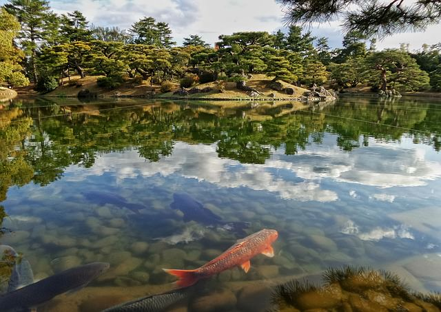 Backpacking in Japan - Natur