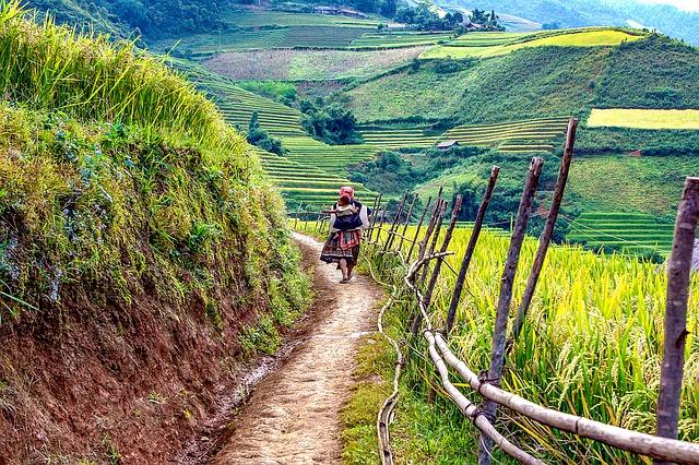 Wanderweg in Vietnam