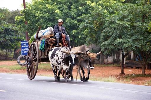 Lebensart in Paraguay