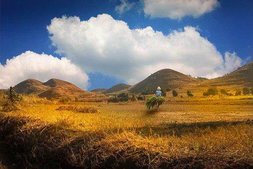 Hills in Madagascar