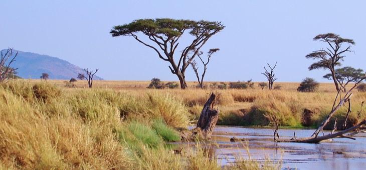 unique nature in Ethiopia
