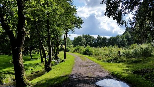 Landschaft in den Ardennen