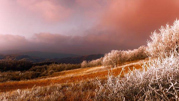 Waldlandschaft in Serbien