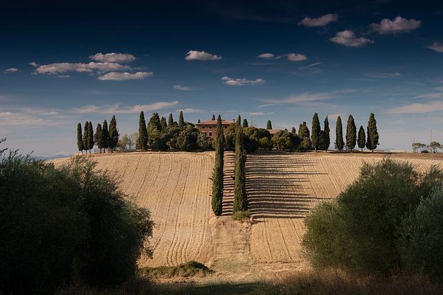 Spain - Fields